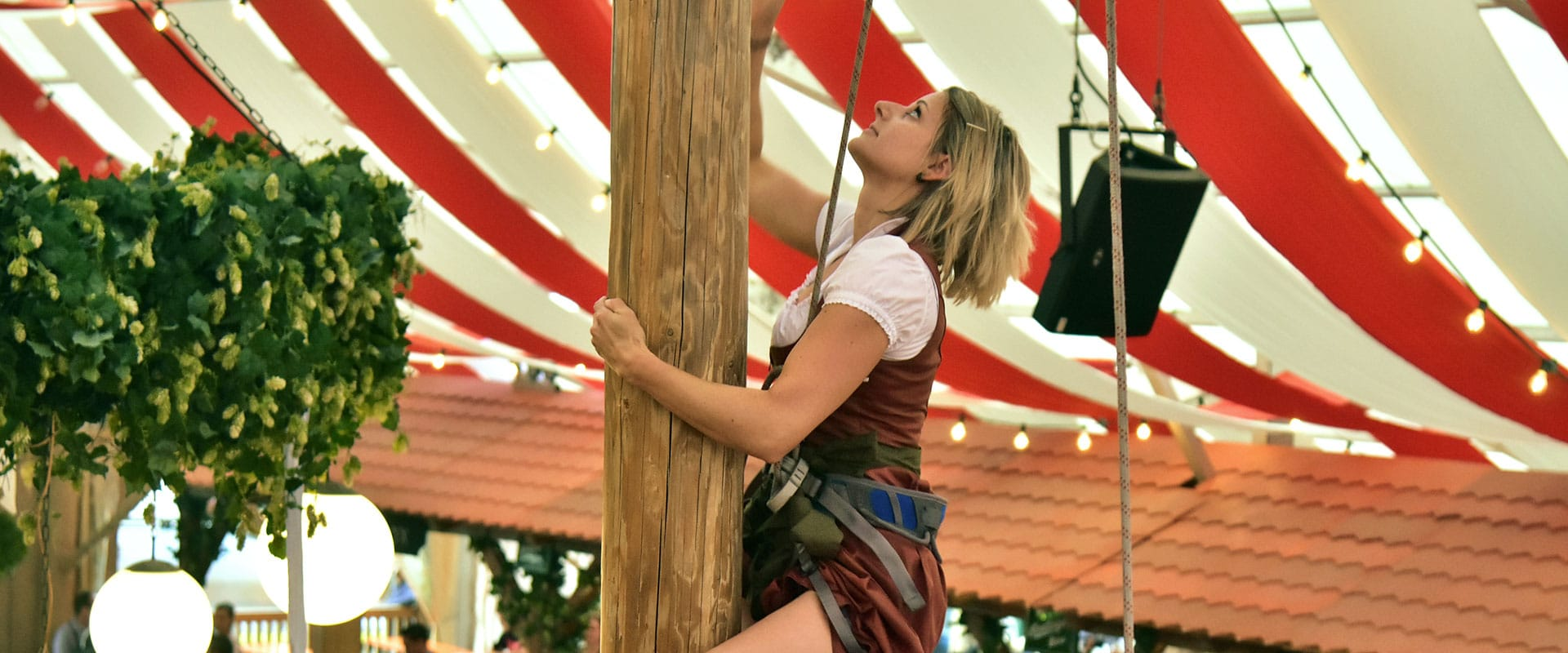 Das Baumkraxeln gehört im Hahn Zelt zum absoluten Highlight auf unseren Festen